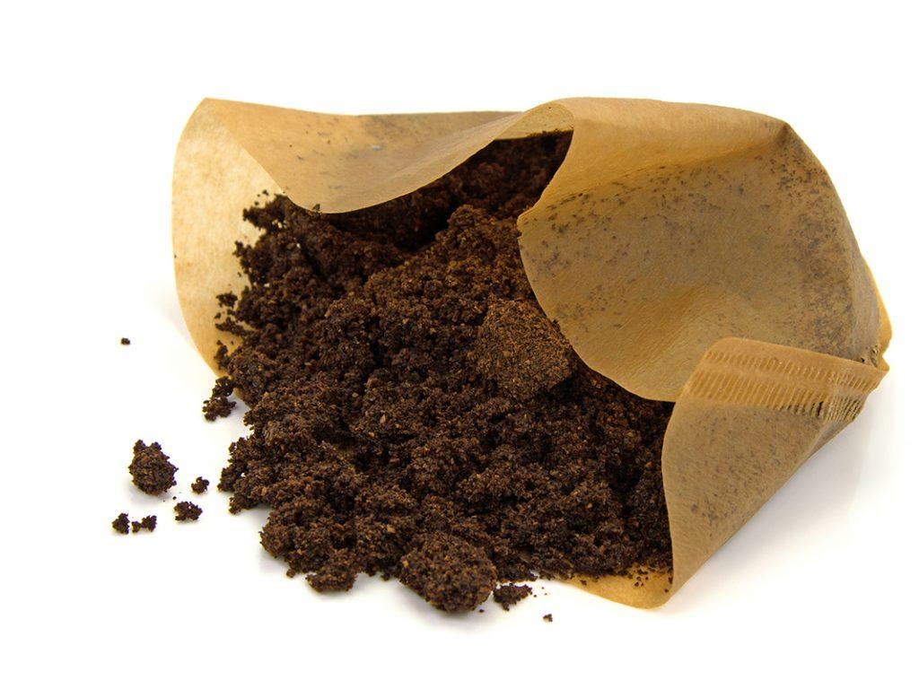 Ein Kaffeefilter mit Kaffeesatz