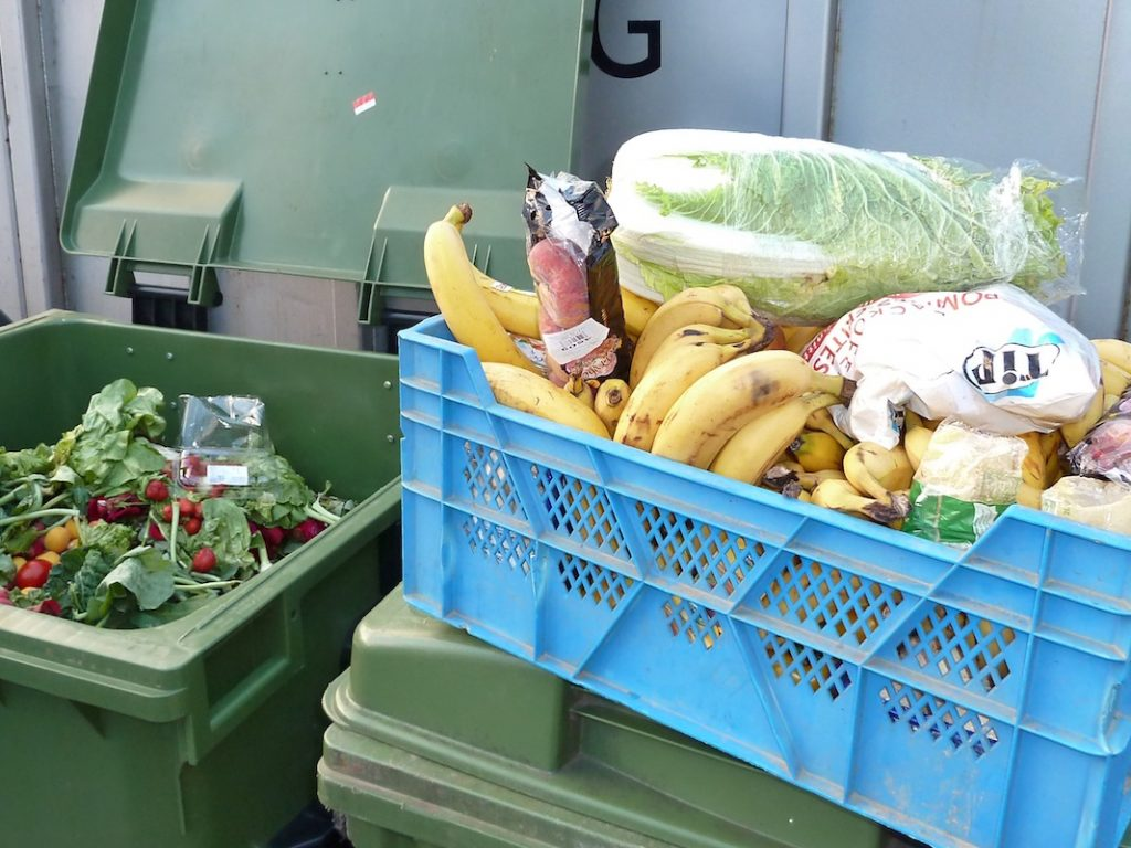 Aus dem Müll gerettete Lebensmittel
