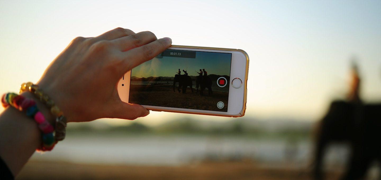 Bild Videowettbewerb